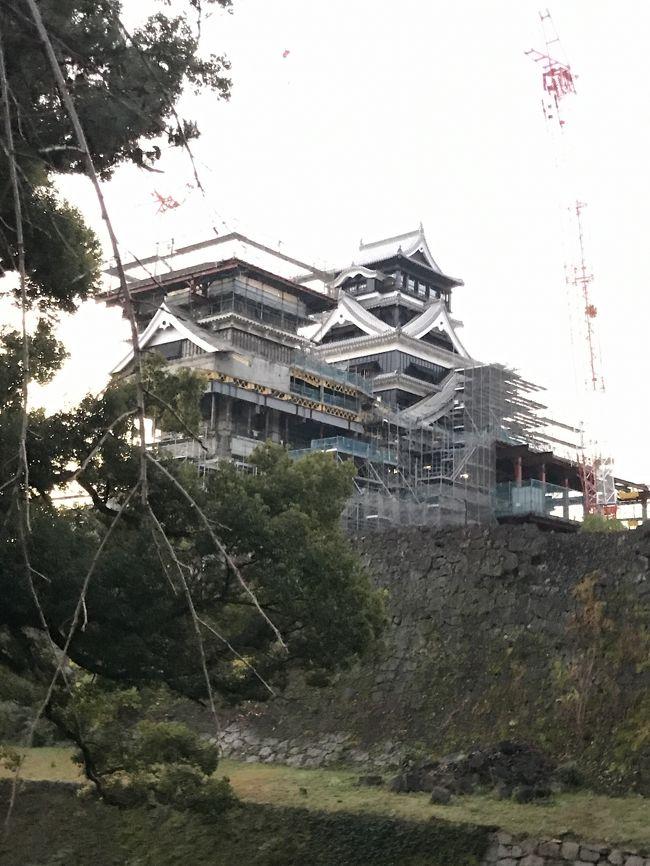 震災以来の訪問となった熊本で早朝熊本城を周遊ランを実施した。復興見学ルートというものがあり、取り急ぎ市役所からスタート。熊本大神宮でお詣りをして、東十八間櫓に到着。暗くてよくわからなかったですが、震災時<br />の悲惨な崩れ方よりはよくなっています。続いて北十八間櫓、平櫓と見所があります。北大手櫓門跡の工事をみて加藤神社に行きます。<br />ここから中は現在も通れず、ここから天守閣を眺めます、立派な宇土櫓の復旧も進みクレーンで賑々しいですが、とても感動的な城です。<br />戌亥櫓、遠くの公園から天守を眺め、1周して帰りました。全体で3KMぐらいですので、熊本訪問の際はぜひ回ってください。