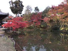 高台寺の紅葉を