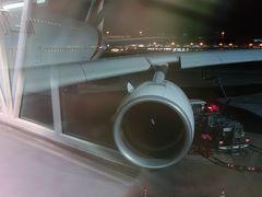 ドバイからA380-800に乗りました。エコノミーですが,3人席を独り占めしたので,「荷物感」はしませんでした。