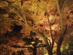 深夜のフェリーで行く香川② 栗林公園のライトアップ