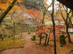 2018年初冬の旅行 博多の街をぶ~らぶら! 2度目の訪問です