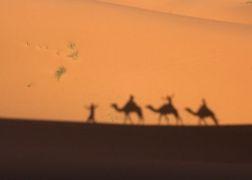 モロッコ旅 -No.6 癒しの庭園、マラケッシュ
