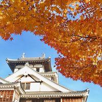 明智光秀の築いた福知山城の紅葉&竜王戦の部屋