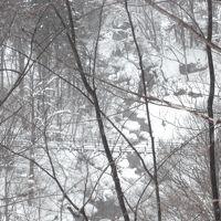 健忘録シリーズ!白骨温泉は静寂と水墨画のままの風景☆新宅旅館&国宝松本城