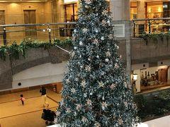 横浜で美術鑑賞後にクリスマスツリー巡り