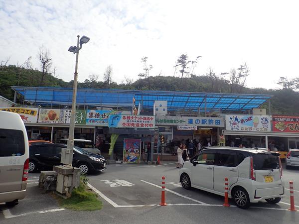 冬でも暖かい沖縄へ(13)崎本部のゴリラチョップでダイビング。道の駅許田でステーキ