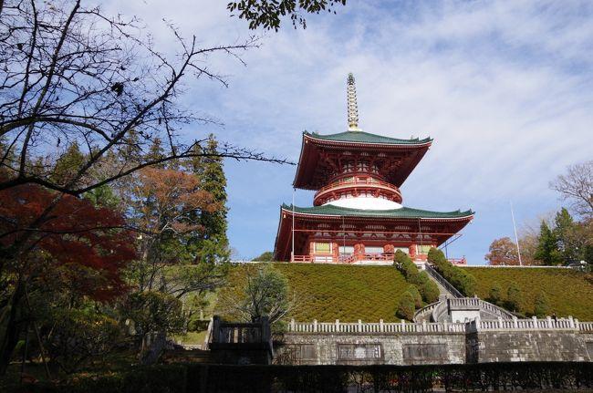 成田山に行ったら、思いもがけず紅葉が綺麗でした。<br />成田山にこんないい景色があったなんて知りませんでした。<br />時間があまりなく、心残り。