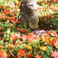 2018年11月 先頭でしか見れない圓光寺の紅葉を見てきた&大好きなラーメン屋さん