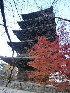 女五人で紅葉を満喫した京都その2
