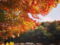 〈長野〉電車とバスで巡る秋の木曽路 日本の古き良きが詰まった奈良井宿~馬籠宿~妻籠宿