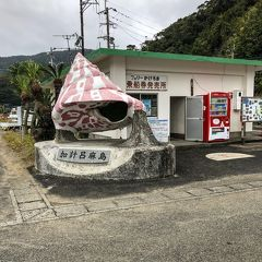《2018.Dec》Capter Ⅲ,17th 3day driving of visit to Post Office in AMAMI&KAKEROMA,without sightseeing.