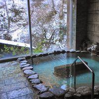 新潟の旅:鮭づくしと温泉三昧