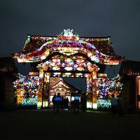 そうだ、京都行こう。真っ赤っかな紅葉とライトアップ
