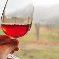 日本酒と新潟ワイン呑んだくれの旅。