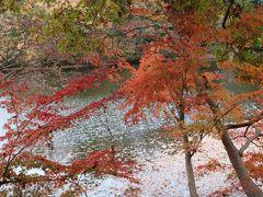 震生湖の水辺に揺らぐ紅葉