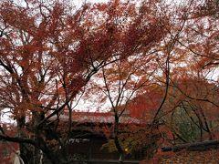 2017年11月 福岡・筑後川温泉と秋月城址の紅葉(目鏡橋・武者返しの石垣など)