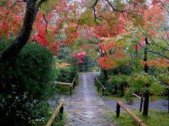 とうとう桂離宮、見てきました!      【4】《京都アートの旅 2日目-その2》     鷹峯のつづき光悦寺、そして今宮神社