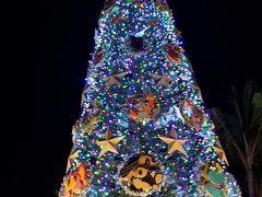 Hawaii☆二人旅☆2018☆《4日目☆シーライフパーク/ドルフィンロイヤルスイム~クリスマスイルミネーション》
