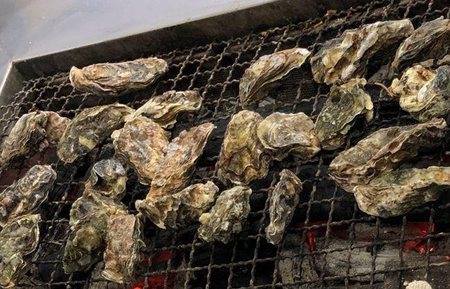 先月くらいから牡蠣が食べたくて食べたくて…。旦那様に相談したところ、<br />「岡山行く?牡蠣食べ放題のお店あるよ。」って。<br /><br />牡蠣食べ放題なんて、夢みたい!行くに決まってんじゃ~ん!!<br /><br />早速行ってきました(^^♪