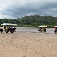 現地ツアーで西表島と由布島を訪問