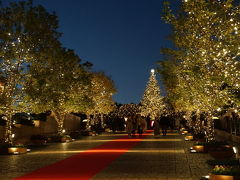 クリスマスのムードあふれるホテルステイ♪ /ウェスティン東京
