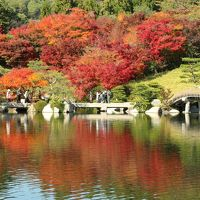 2018 もみじまつり開催中の【三景園】で紅葉狩り♪