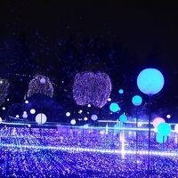 国立新美術館で美術展とランチ、夜は東京ミッドタウン・六本木ヒルズのルミネーション