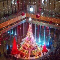 今年も丸の内のイルミネーション「MARUNOUCHI BRIGHT CHRISTMAS 2018」を見に東京へ、ついでに秋の皇居乾通り一般公開にも行きました。