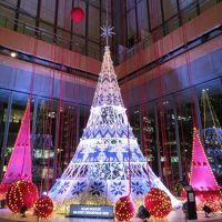 MARUNOUCHI BRIGHT CHRISTMAS 2018 北欧から届いたクリスマス with Yuming