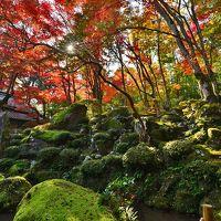 日本の原風景を留めた隠れ里.「石の寺」教林坊の紅葉と庭園