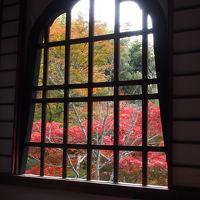 東京から車で紅葉の京都へGO!
