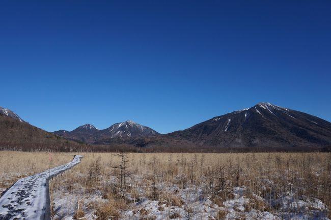 今年の自分的初雪を見に、戦場ヶ原に行ってきました!<br />