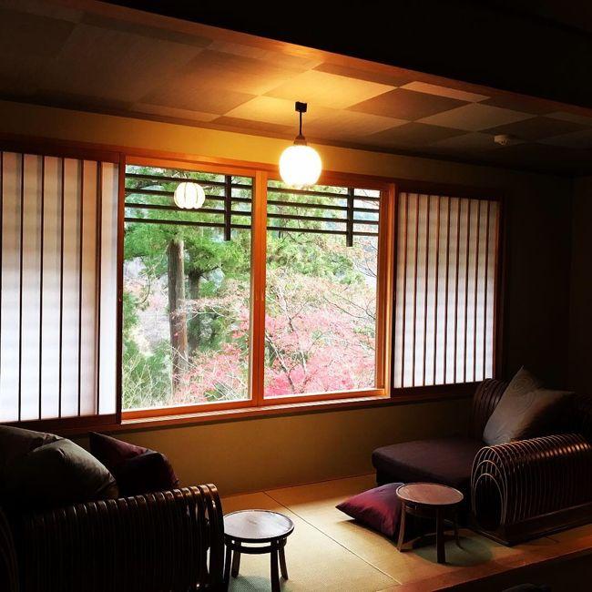 両親が還暦を迎えたので一緒に京都旅行しました。<br />両親、夫の4人旅です。<br />こんな機会でもないと中々泊まらない、星のや京都に1泊しました。<br />グルメと癒しの2泊3日旅です。