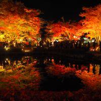 2018曽木公園の紅葉