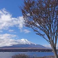富士山一周 2018.12.15 2.精進湖から富士山を時計回りに半周自宅へ