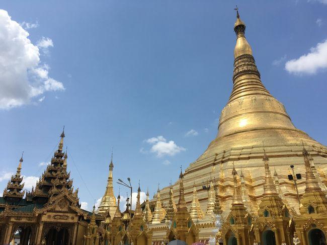 ヤンゴンのダウンタウン滞在はジャスト24時間。金ぴかのシュエダゴンパヤーさえ訪ねられれば、と(一昼夜ゴールデンロックを愛でてきたというのに)のんびり過ごすはずが、のっけから「あと5分待って」の罠に楽しく引っ掛かり、大幅タイムロス。<br /><br />灼熱の境内で大盛り上がりの参拝者たちに紛れて、身も心も足の裏も熱々に。最後はタナカクリームとミャンマービールでクールダウンして、初ミャンマーもめでたく、完。