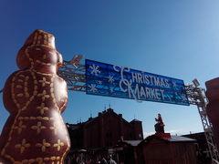 赤レンガ倉庫クリスマスマーケット みなとみらいクリスマスツリー