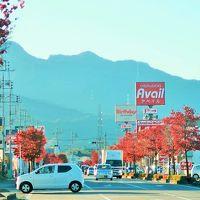 前橋⇒草津 日本ロマンチック街道とも 助手席の光景 ☆新そばを味わってドライブ