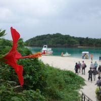 川平湾の観光。グラスボートに乗って,サンゴとサカナの鑑賞。効率の良い観光地。