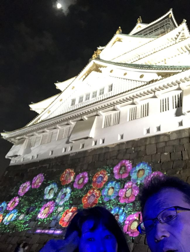 """2018年12月15日にオープンした「SAKUYA LUMINA(サクヤルミナ)」に行って来ました。<br />サクヤルミナは大阪城公園が舞台の9つの章からなる物語を、来場者のみずからの足で辿っていくナイトウォークです。<br />多様なメディアを使いながら、大阪城公園の土地ならではのユニークな体験を生み出しさらに、<br />予想もしなかったような面白い方法で未来と現在が交差するという演出により、物語の世界観に引き込みます。<br />なお、友情、冒険、喜びがテーマのストーリーは、世界中の人々の心を繋ぐ<br />「笑顔」からインスパイアされているのだそうです。<br /><br />入場料 大人3200円(前売り2700円)ですが、1/31までは大阪市民優待で2000円です。<br /><br />私は大阪市民ではありませんが、市内で仕事をしているので社員証提示で優待受けられました。<br /><br />チケットは事前にファミリーマートのfamiポートのよしもとチケットから<br /><br />18:00(時間予約制)で購入しました。<br /><br />大坂城は広くて駅からでも結構歩くので早めに出発し16:45に大阪城公園駅に着きました。<br /><br />大阪城ホールでイベントがあるようで(m-flo presents """"OTAQUEST LIVE"""" でした)<br /><br />沢山の人がホールの方へ向かっています。<br /><br />大阪城ホールの横を抜けて東外濠、北外濠の外周をぐるっと回って<br /><br />京橋口からエントランスに到着したのが17:24。<br /><br />20人ほどがすでに待たれていました。<br /><br />受付を済ませ、18:00まで待機場所のような所で待ちます。<br /><br />待ち時間はとても寒いです。<br /><br />18:00定刻にスタートしました。<br /><br />ゆっくり回って、18:55に全て見終わりました。<br /><br />感想は、夜の写真は難しい。です。<br /><br /><br /><br /><br />"""