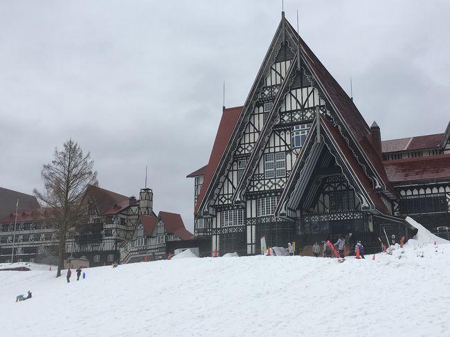 昨年同様、クリスマス時期にスキー旅行です。<br />今回も新潟、越後湯沢で下車<br />ホテルはグリーンプラザ上越です。<br /><br />びゅうの「思いっきりゆきあそび&amp;ファミリースキー」で手配しました。<br /><br />子供達、はじめてのスキーにチャレンジ♪