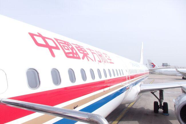 いよいよ楽しかったGWの旅行も最終日。乗り継ぎ地である上海から帰るのですが……。なんか起床したら体がだるい。どうやら長旅の疲れが出てきたようです。軽く風邪気味の中、頑張って中国から日本へと帰ります。<br /><br />614冊目 2021/06/12投稿