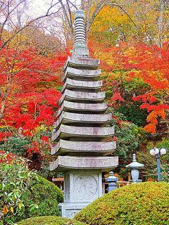 大子-3 臥雲山 永源寺(えいげんじ)もみじ寺の秋 ☆紅葉真っ盛りの時季に