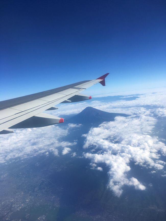 ★概要<br />2018年7月27日(金)<br /><br />羽田空港発の早朝便で香港を経由してヤンゴンへ。<br /><br /><br />★全体概要<br />2010年にインドネシアのボロブドゥール遺跡へ行った際に「世界3大仏教遺跡」を知った。<br />カンボジアのアンコールワット、インドネシアのボロブドゥール、そしてミャンマーのバガン。<br />その頃から「いつか行きたい場所」としてリストアップされていた。<br />近年の民主化や経済自由化により急速に発展し、「アジア最後のフロンティア」と呼ばれることもあるというミャンマー。<br />平成最後になりそうな旅に相応しい国かもしれない。<br /><br />本文中の金額は旅行当時の両替レート。