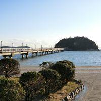 竹島弁財天とみかん狩り&フルーツ大福作りバスツアーに参加しました