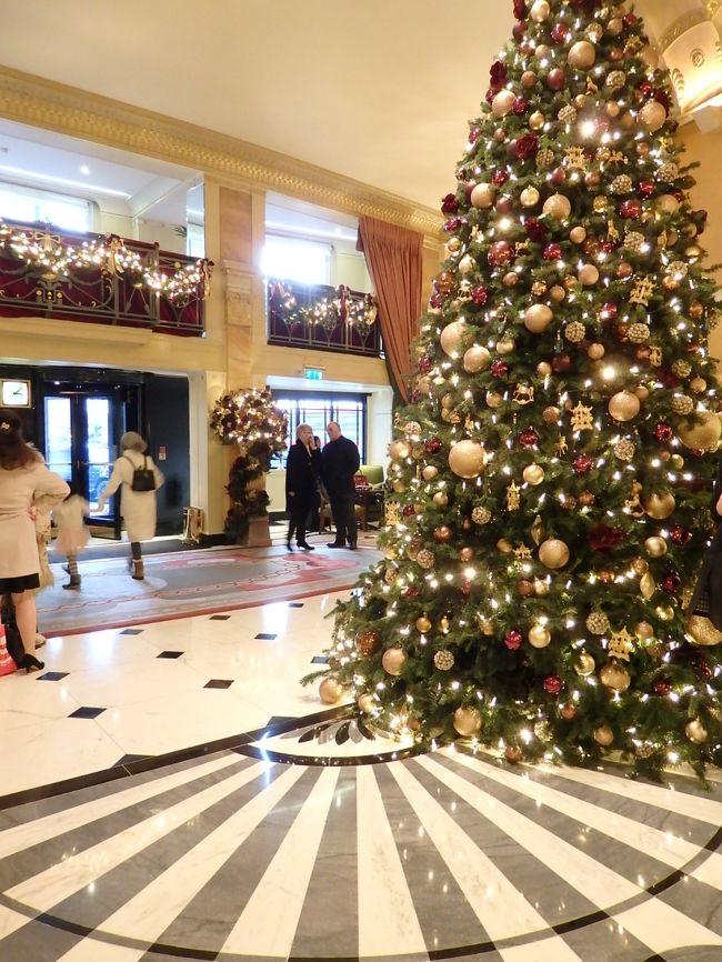 <br /><br /><br />クリスマス直前の土曜日。<br /><br /><br /><br />いつものように直接夕方5時からの仕事に行く前に、ホテルのクリスマス・デコレーションを見学して来ました。<br /><br /><br /><br />乗ったバスがパークレーンを通り、そのままヴィクトリア駅まで行くものだったので、最初予定を立てたのはザ・ゴーリングとホテル41でした。この2つは訪れた事がなく、ぜひ行きたいと思っていましたが、渋滞気味で乗ったバスに暖房がなく、足もとの寒さと押す時間が気になってパークレーンで途中降りしました。<br /><br />プランBとなったパークレーン界隈のホテルは、時々訪れるドチェスターから回って、最後はピカディリーのリッツでエンドです。<br /><br />よい結果でした。<br />マルティプルに訊ねることが出来て、仕事先のあるレスタースクエアにもアクセスが便利だったので、遅刻する事もなく効率よく回ることが出来た。<br /><br /><br /><br />通常はイライラするクリスマス時に聴く街頭の音楽ですが、今回は最高!! <br /><br /><br />超5つ星クラスの音楽に触れて魂をゆすぶられ、何度がうるうるしてしまいました。<br /><br /><br /><br /><br /><br />