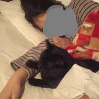大分で猫ちゃんが添い寝してくれるオーベルゼレボーに泊まる(=^ェ^=)幸せ過ぎな湯布院②