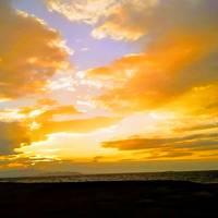 18年12月クルマで行く浜松・伊良湖・掛川