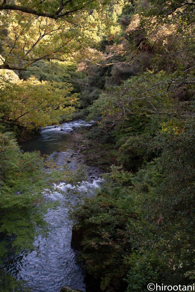 この日は台風が北陸方面を直撃するという中で、無謀にも加賀の山中温泉に向かいました。北陸自動車道は、結構風が強く、恐る恐る運転しました。山中温泉到着後、なんとか雨は免れたところで、鶴仙渓を散策しました。
