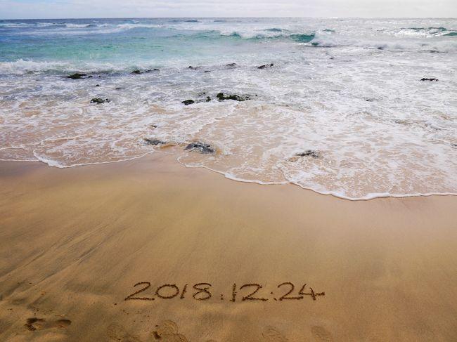 初日早々に寝落ちして真夜中にハンバーガーを食べることになったまでが前回。<br />24日はHoiHoi Hawaiiの日帰りツアー参加です。<br />朝の時点でまーーーーったくお腹すいていません。<br />そりゃ3時に高カロリーなもの食べてればね…<br /><br />この日はHoihoi Hawaiiの日帰りツアーで<br />・カカアコウォールアートめぐり<br />・カメハメハベーカリー<br />・ハワイ出雲大社<br />・ハロナ潮吹き岩&ビーチコーヴ<br />・サンディビーチ<br />・ワイマナロビーチ<br />・カイルア散策<br />・モアナルナ・ガーデン<br />ここまでツアー<br />個人じゃなかなか効率的に回れなそうなので、ツアー参加を決めました。<br /><br />その後<br />・マイタイバー<br />・クラックキッチン<br /><br />観光と食欲にまい進した日でした。<br /><br />23日 出発からハワイ到着、アラモアナでショッピング<br />24日 カカアコ、ハロナ、カイルアなど名所めぐり日帰りツアー←ここ<br />25日 ワイキキエリアぶらぶら&ビーチ・プール<br />26日 カヴェヘヴェヘでパワーチャージそして現実へ<br />